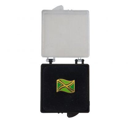 Achterhoekse vlag pin